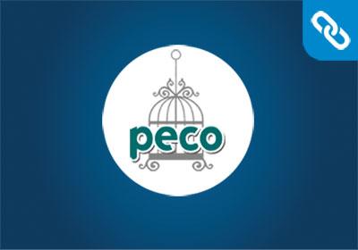 Κατασκευή Ιστοσελίδας | Peco Pet